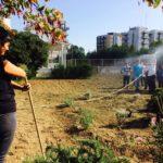 """Laboratorio """"Immaginare Taranto come un grande giardino diffuso"""""""