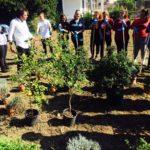Taranto Multicolors: un laboratorio per creare un giardino delle piante tintorie